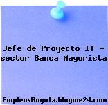 Jefe de Proyecto IT – sector Banca Mayorista