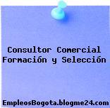 Consultor Comercial Formación y Selección