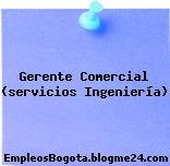 Gerente Comercial (servicios Ingeniería)