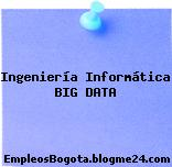 Ingeniería Informática BIG DATA