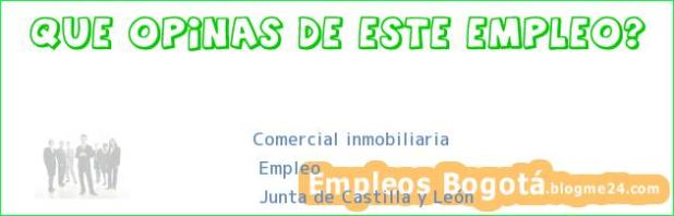 Comercial inmobiliaria | Empleo | Junta de Castilla y León