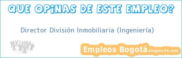 Director División Inmobiliaria (Ingeniería)