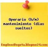 Operario (h/m) mantenimiento (dias sueltos)