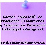 Gestor comercial de Productos Financieros y Seguros en Calatayud Calatayud (Zaragoza)