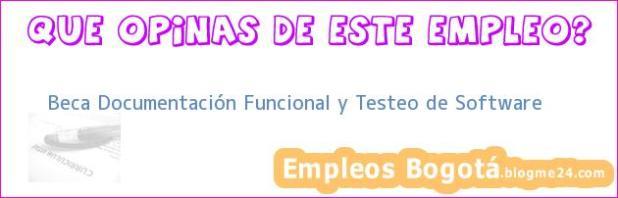 Beca Documentación Funcional y Testeo de Software
