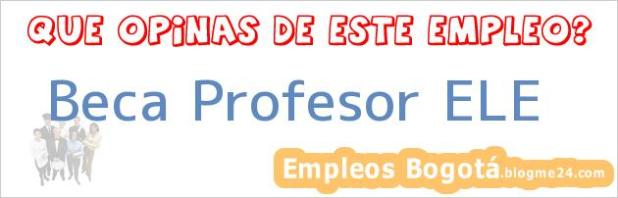 Beca Profesor ELE