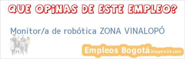 Monitor/a de robótica ZONA VINALOPÓ