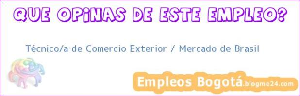 Técnico/a de Comercio Exterior / Mercado de Brasil