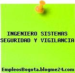 INGENIERO SISTEMAS SEGURIDAD Y VIGILANCIA