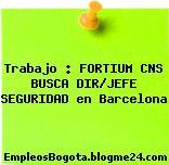 Trabajo : FORTIUM CNS BUSCA DIR/JEFE SEGURIDAD en Barcelona