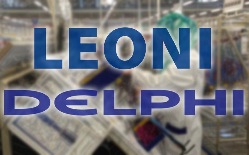 DELPHI et Leoni 1600 postes Niveau bac