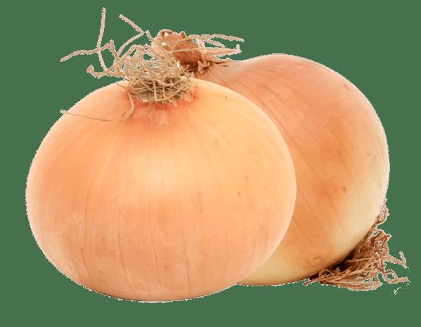 Cebolla Blanca- Tienda Gourmet Emporio LaMarta