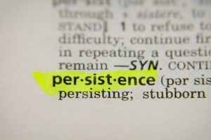 Persistence and Financial Freedom