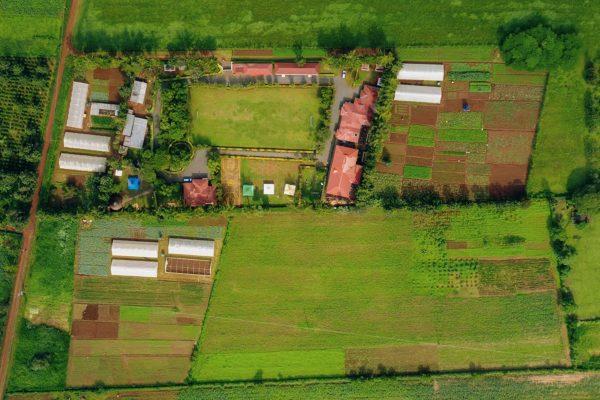 BABA NYUMBANI FARM