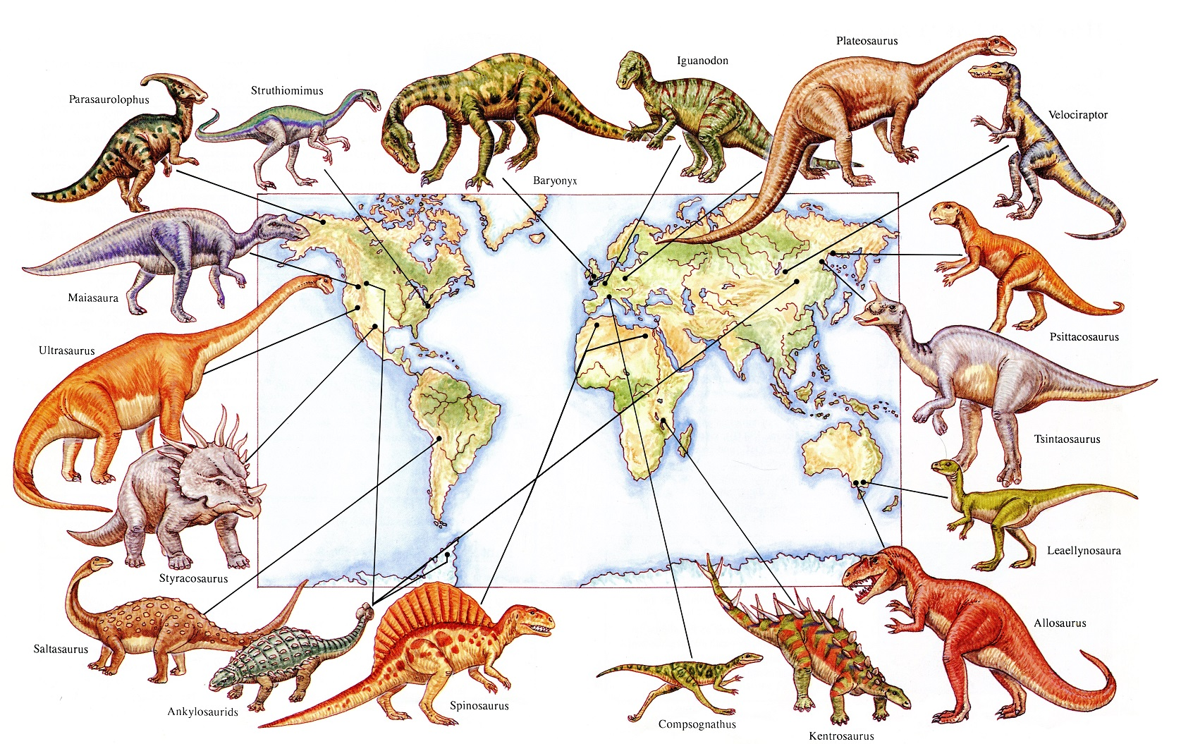 Where Are The Dinosaur Fossils Found