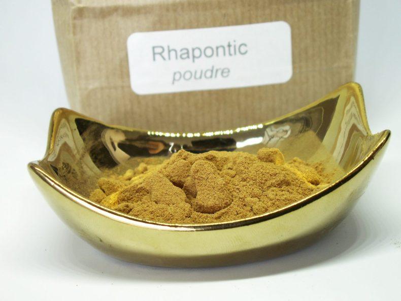 rhapontic