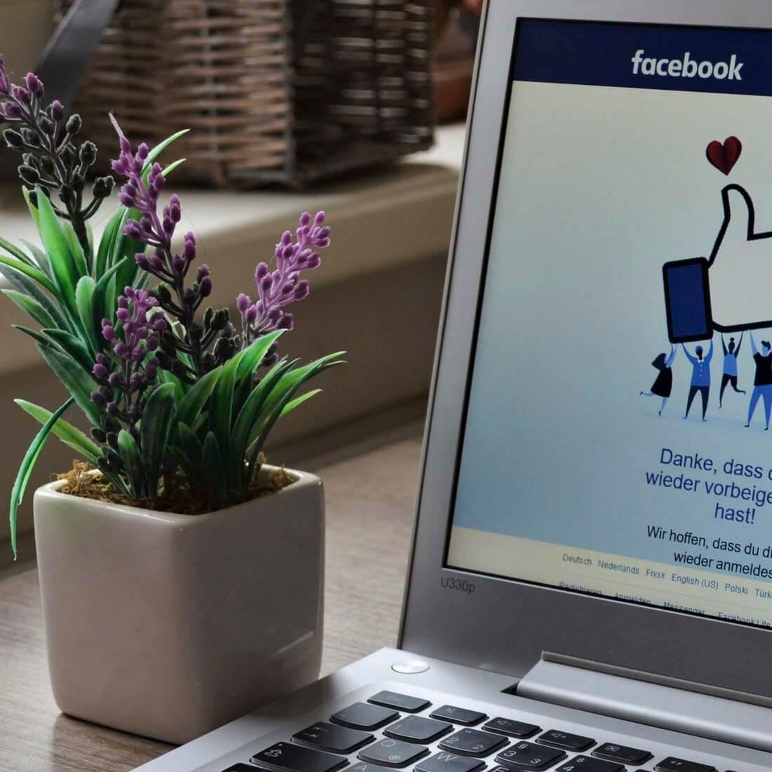 Minimalismo Digital Facebook