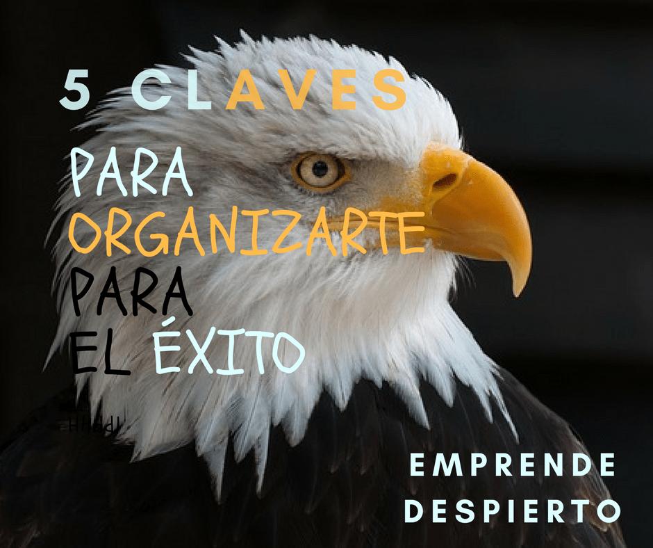 5 Claves para Organizarte para el Éxito
