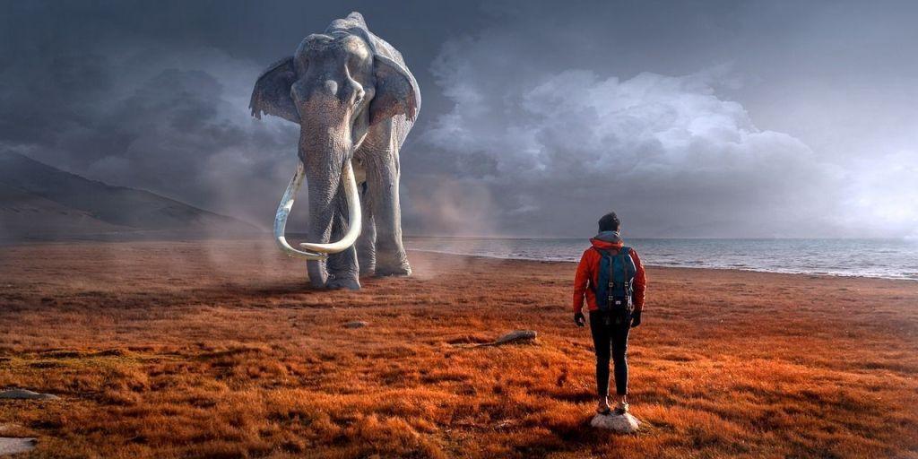 Dijo el Elefante al Hombre, que pequeño eres, y el Hombre dijo: Si, pero soy emprendedor, puedo crear una lanza y Matarte, le guiño un ojo royo emoticono ;) el elefante no pudo parar de reir dos semanas