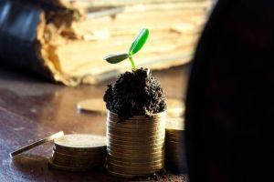 Requisitos legales de los ingresos pasivos (II)