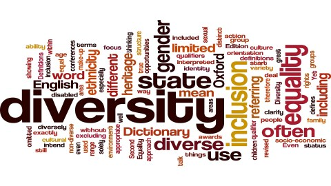 Innovating Your Diversity Model