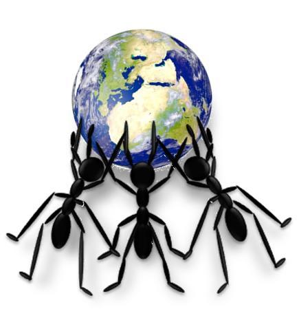 Las hormigas nos enseñan a evolucionar hacia una sociedad sostenible.