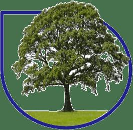 Abastecimiento de recursos sostenibles