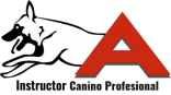 Instructor_Canino_Profesional_Alicante