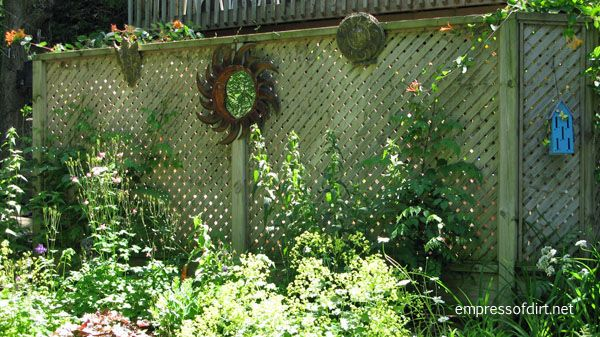 Garden Fence & Screen Privacy Ideas