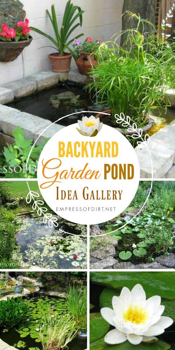 17+ Beautiful Backyard Pond Ideas For All Budgets ... on Pond Ideas Backyard id=29446
