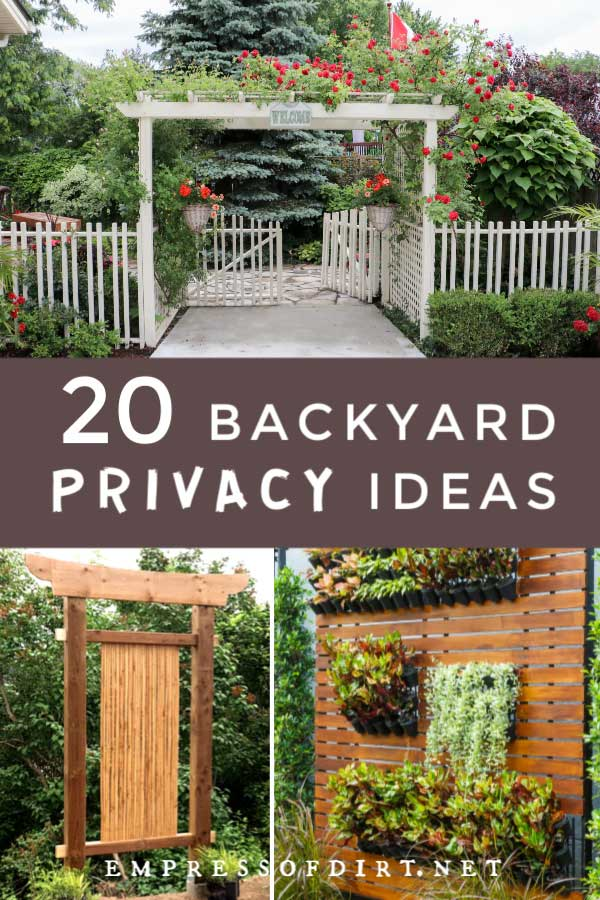 20 Ideas for Better Backyard Privacy   Empress of Dirt on Decorations For Privacy Fence id=97668