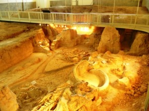 waco mammoth site compressed WP