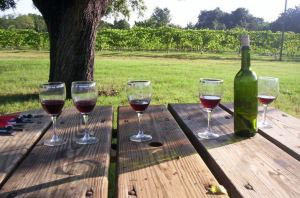 Marker Cellars Wine Pairing and Texas Wine History 2  Relax and have a glass of wine