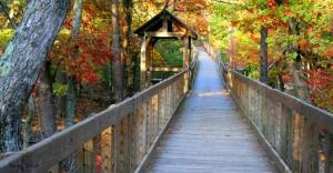 Boardwalk in Cheaha State Park in Alabama displaying stunning fall color