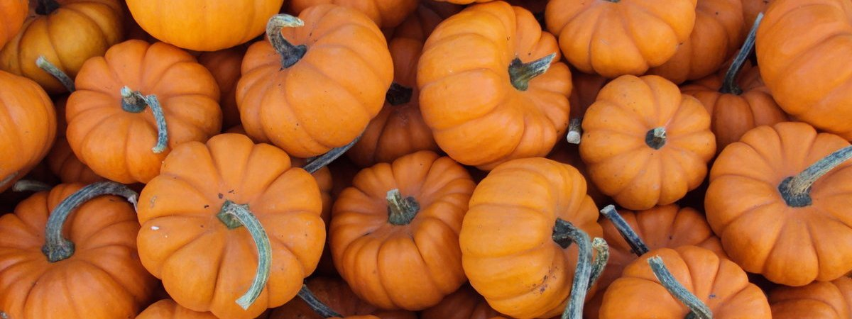 Fall for THIS Recipe: Harvest Pumpkin Loaf (+ Fall Decor Ideas)