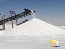 salt in bulk