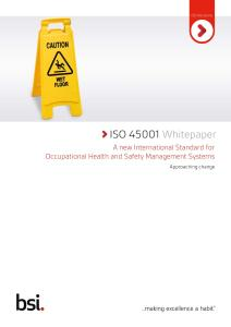 BSI ISO 45001 Revision Whitepaper