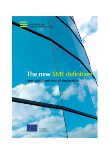 The new SME Definition: User Guide and Model Declaration