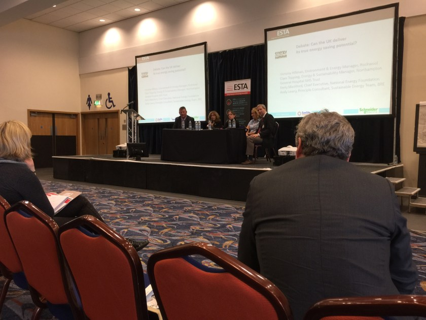 "ESTA Energy Efficiency Summit Debate - ""Can the UK deliver its true energy saving potential?"""
