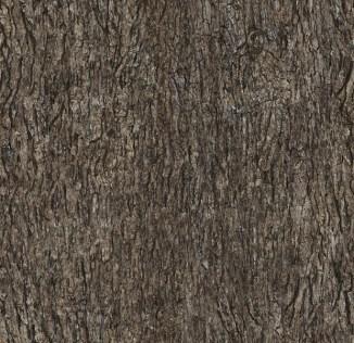 organic-patterns-1