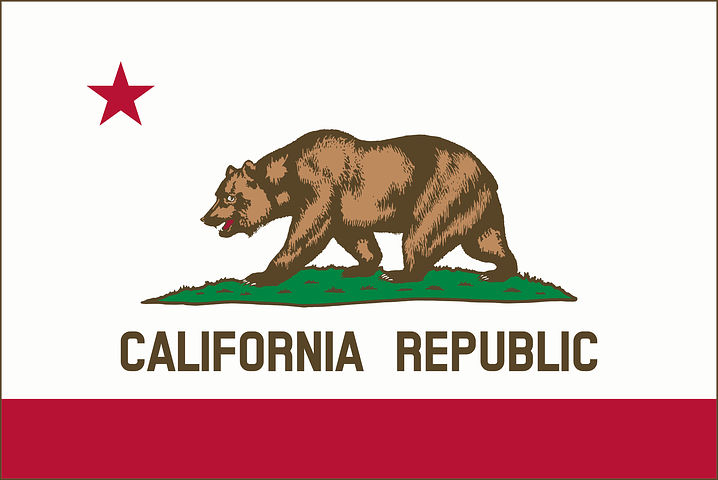California EMT Flag