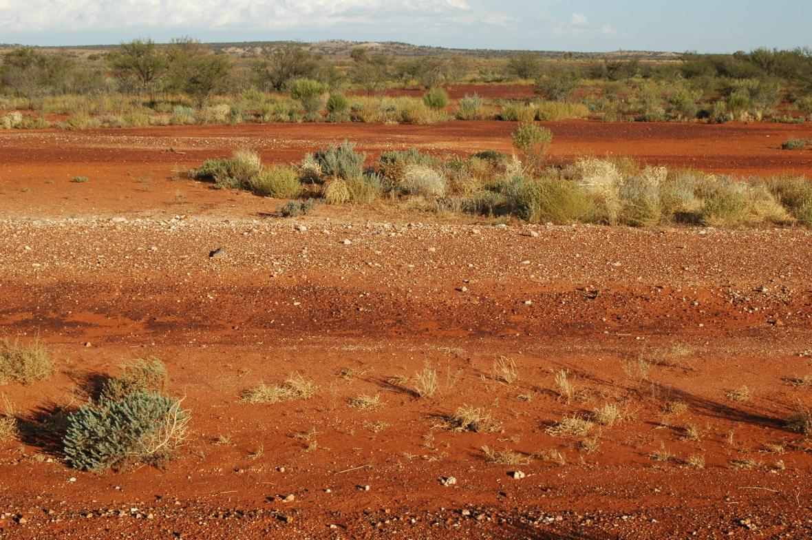 NSW Outback 1