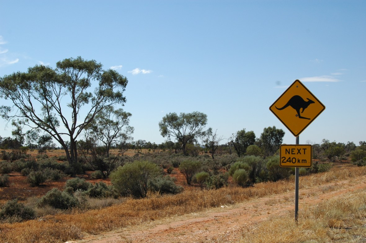 Kangaroo Sign in Outback