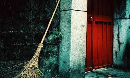 Spring Cleaning – Fuji Velvia 50 – RVP 50 (120)