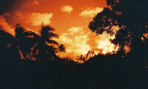 Hawaiian hues – Shot on Lomography Redscale XR 50-200 at EI 200(35mm format)