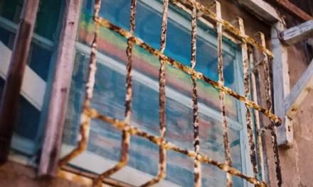 Rainbow screen – Lomo Color 400 Negative (120)