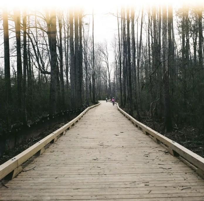 Preston Young - Trail Light Leak