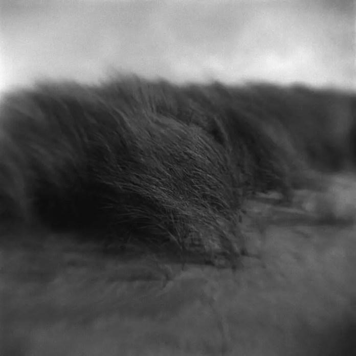 Dune #1 - Kodak Brownie Hawkeye (flipped lens) - Kodak TMAX 400