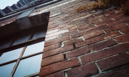 Redbrick – Shot on Kodak VISION3 250D 5207 at EI 250 (35mm format)