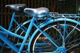 Blue - Fuji Superia Premium 400 shot at ISO1600.